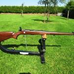 guns aug 13 15 004