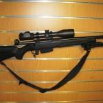 july 15 guns 001