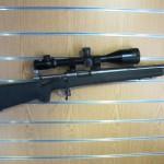 july 15 guns 012
